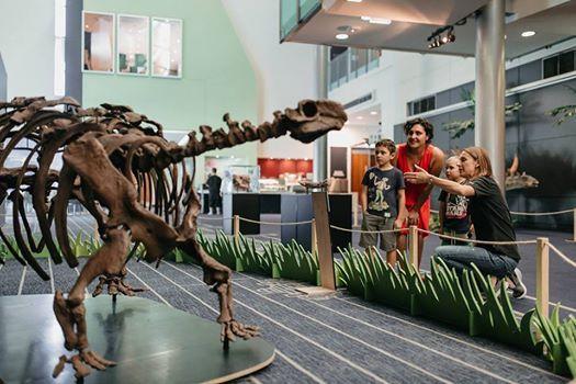 Dinosaur rEvolution Sound Down