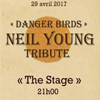 Danger Birds en concert