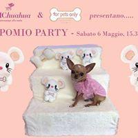 Topomio Special Party