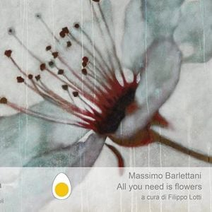 Massimo Barlettani - All you need is flowers