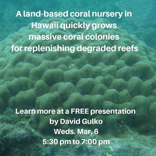 Free talk: Coral Restoration at Land-Based Hawaii Nurseries