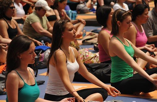 Dublin Yoga and Vegan Festival 2019