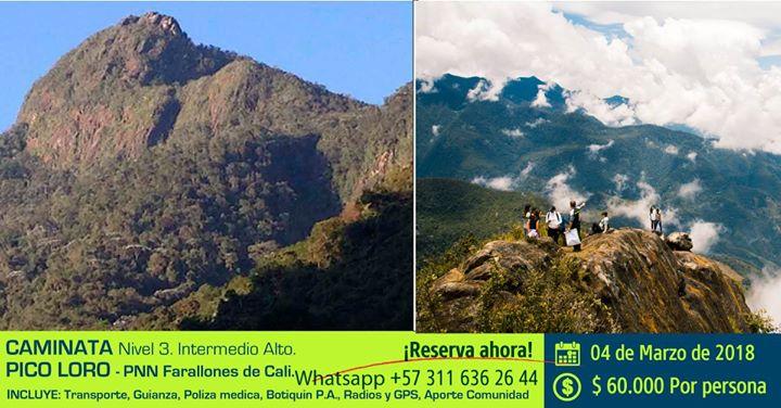 Ultimos cupos Caminata Pico Loro - PNN Farallones de Cali