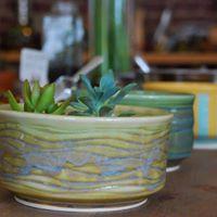Succulent Building Workshop Feat. Stiff Clay Studios