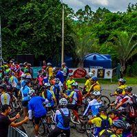 Eco Biker XCM Tatu 2017
