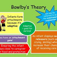 John Bowlbys Theory of Attachment Part II Continued