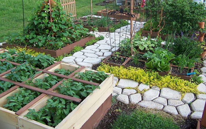 Curso de huertas en terrazas balcones y jardines peque os for Jardines en terrazas y balcones