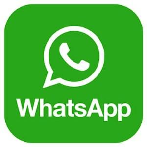 Join Mushroom Whatsapp Group