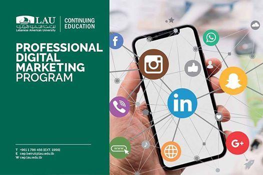 Professional Digital Marketing Program