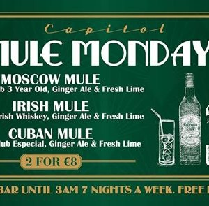 Mule Monday