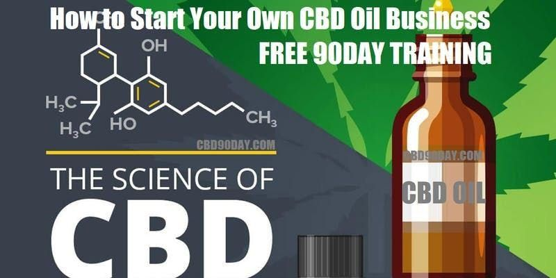 How to Start Your Own CBD Oil Business Augusta GA