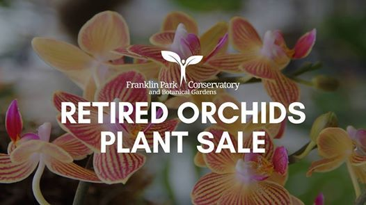 Retired Orchids Plant Sale