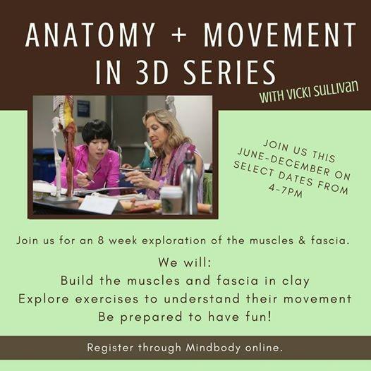 Anatomy In 3d W Vicki Sullivan At Body Balance Institute Florida