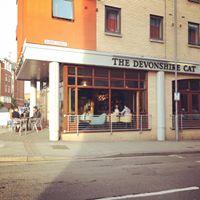 Devonshire Cat Spice Nights 4 - American