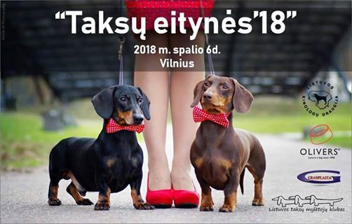 Taks eityns 2018