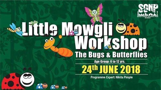 Little Mowgli Workshop (The Bugs & Butterflies)