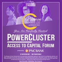 WOCEC  POWERCLUSTER ACCESS To CAPITAL