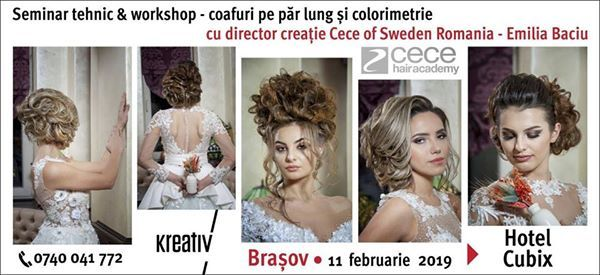 Seminar tehnic&workshop coafuri pe par lung si colorimetrie.
