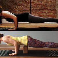 Chaturanga Clinic with Dr. Ariele Foster