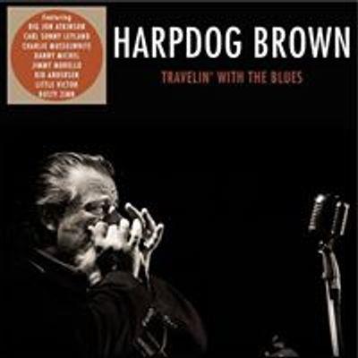 Harpdog Brown LIVE