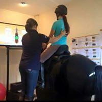 Rider Analysis Clinic - Dressage Simulator