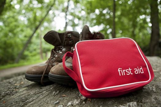 1st Aid for Forest Schools Outdoor Practice (accom onsite)