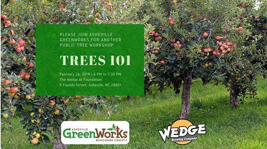 Trees 101 Workshop