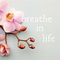 6 Week Meditation Classes