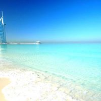 5-Day Group Mentorship in Dubai