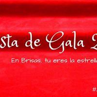 Fiesta de gala Brisas 2015