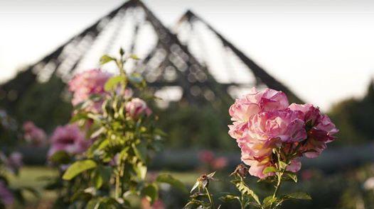 Familienfest in Hattersheim Ein moderner Garten mit Geschichte