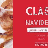 Clase Navidea