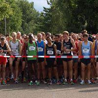 33. Mannheimer Straenlauf ber 10 km des TV Rheinau