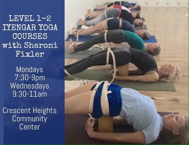Level 1-2 Course (Wednesdays) with Sharoni Fixler