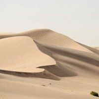 Moonlight Barefoot Dune Training (running)
