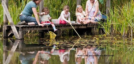 Wildfamilies Explore Pond Dipping at Doxey Marshes