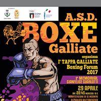 Prima tappa Galliate Boxing Forum 2017 Memorial Gianfelice Giarlotti
