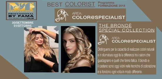 The Bronde Special Collection