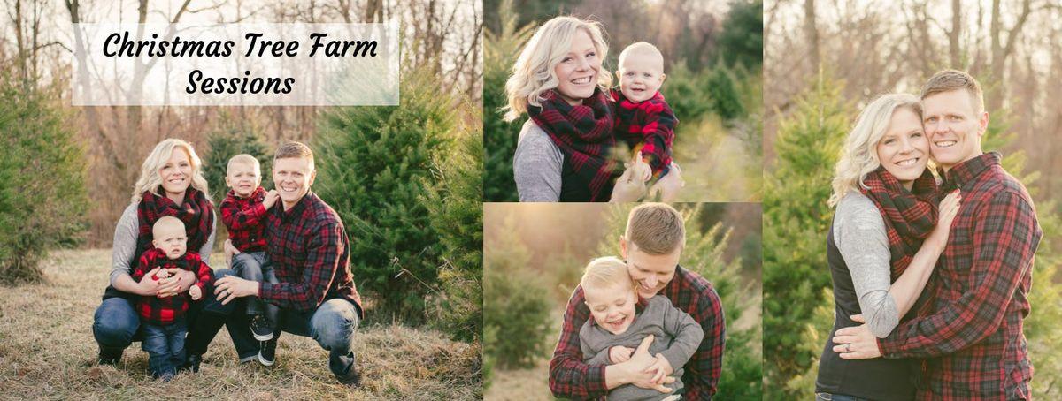 Christmas Tree Farm Sessions