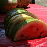 DeSoto County Watermelon Festival