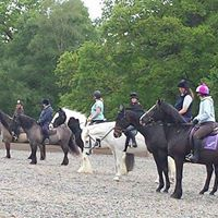 MRC Drill Ride Clinic with Lorna Fraser