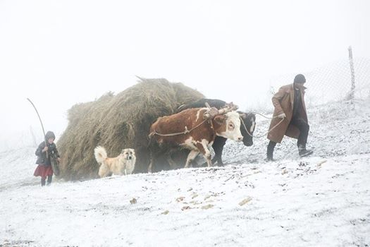Shahdag villages  Ecotour  Hiking