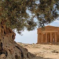 Tour Sicilia Classica