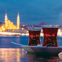 Istanbul autobusom 115 6 dana3 noenja