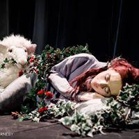 The Sleeper - A Teenage Fairy Tale