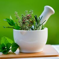 Wellbeing Meeting - May - Introduction To Modern Herbal Medicine