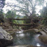 Best of North East Mesmerizing Meghalaya