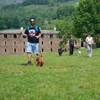 Dog Trekking Educativo