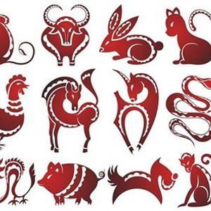 """Curs de Astrologie Chineza Traditionala """"Coloanele Destinului"""""""