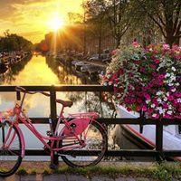 Amsterdam za dvoje  Hotel 3 4 dana
